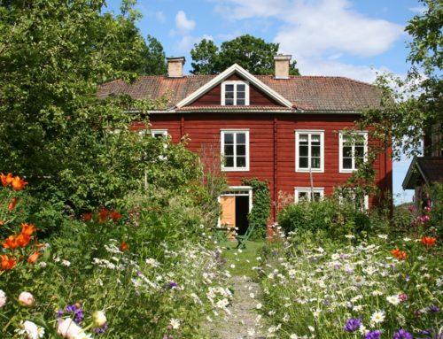 Ontdek Hälsingland te voet: lopen bij werelderfgoed