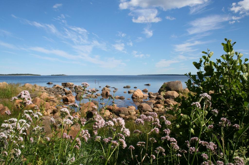 Wandelend langs de oostkust in Zweeds Hälsingland