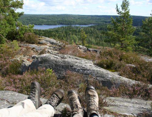 Sörknatten, Dalsland: uitzicht vanaf de heuvelkam