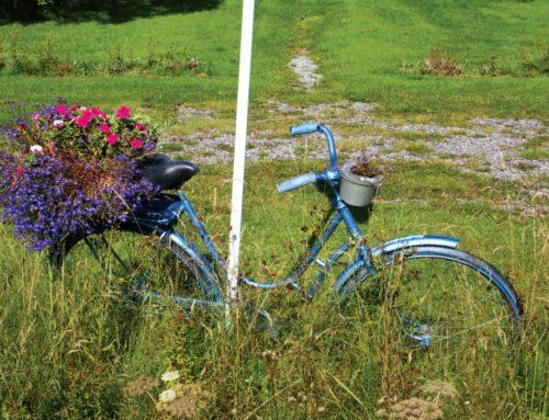 Op de pedalen in Arvika
